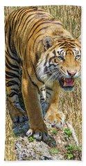 A Jungle King Beach Sheet