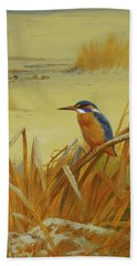 A Kingfisher Amongst Reeds In Winter Beach Towel by Archibald Thorburn