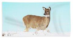 A Lonley Deer In Snow Beach Towel