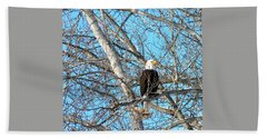 Beach Towel featuring the photograph A Majestic Bald Eagle by Will Borden