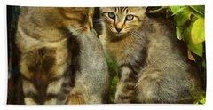 A Pair Of Feral Cats Beach Towel
