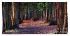 A Path Of Redwoods Beach Sheet