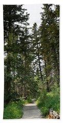 A Path Through The Trees Beach Sheet