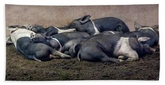 A Pile Of Pampered Piglets Beach Sheet