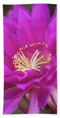 Beach Towel featuring the photograph A Pink Punch  by Saija Lehtonen