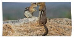 A Quick Kiss Beach Towel by John Roberts