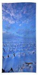 Beach Sheet featuring the photograph A Quiet Light Purely Seen by Phil Koch