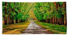 A Road Through Autumn Beach Sheet by Wallaroo Images
