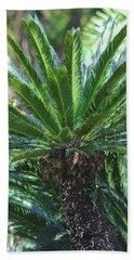A Shady Palm Tree Beach Towel