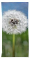 A Single Dandelion Seed Pod Beach Sheet