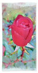 Beach Sheet featuring the photograph A Single Rose In October by Joan  Minchak