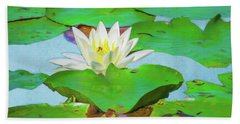 A Single Water Lily Blossom Beach Towel