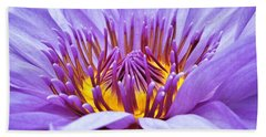 A Sliken Purple Water Lily Beach Towel