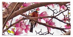 A Songbird In The Magnolia Tree - Square Beach Towel