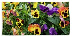 A Spread Of Pansies Beach Towel
