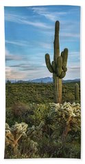 Beach Towel featuring the photograph A Spring Evening In The Sonoran  by Saija Lehtonen