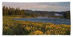 A Spring Morning Beach Towel by Leland D Howard
