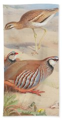 A Stone Curlew And A Pair Of French Partridge Beach Towel