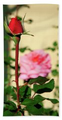 Beach Towel featuring the photograph A Tale Of Two Roses by Lon Casler Bixby