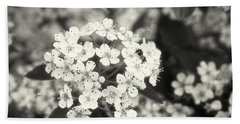 A Thousand Blossoms In Sepia 3x4 Flipped Beach Towel