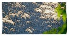 A Thousand Suns - Ring Of Fire Eclipse 2012 Beach Sheet by Bill Owen