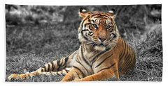 A Tiger Relaxing On A Cool Afternoon II Beach Towel