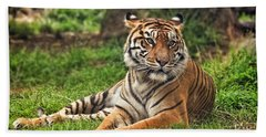 A Tiger Relaxing On A Cool Afternoon Beach Towel by Jim Fitzpatrick