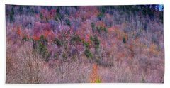 Beach Towel featuring the photograph A Touch Of Autumn by David Patterson