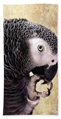 Beach Towel featuring the photograph A Touch Of Grey by Betty LaRue