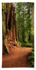 Beach Towel featuring the photograph A Trail In The Redwoods by James Eddy