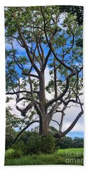 Beach Towel featuring the photograph A Tree In Paradise by DJ Florek