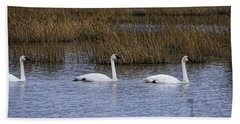 A Trio Of Swans Beach Towel