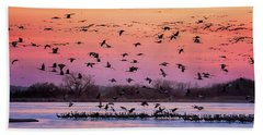 Beach Towel featuring the photograph A Vibrant Evening by Susan Rissi Tregoning