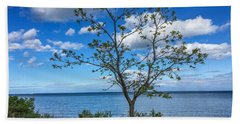 A Walk Along Lake Michigan Beach Sheet