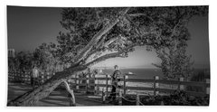 A Walk In The Park B And W Beach Towel