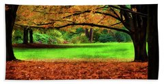 A Walk In The Park Beach Towel