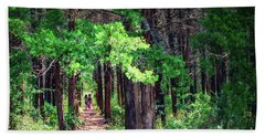 Beach Sheet featuring the photograph A Walk Into The Forest by Tamyra Ayles