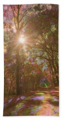 Beach Towel featuring the photograph A Walk Through The Rainbow Forest by Beth Sawickie