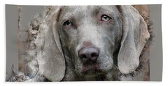 A Weimaraner Beach Towel