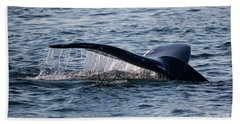 A Whale Tail Beach Towel by Suzanne Luft