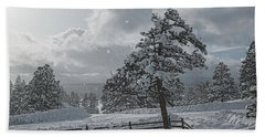 Beach Towel featuring the photograph A Winter Storm In Pagosa by Jason Coward