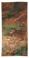 A Woodcock And Chick In Undergrowth Beach Sheet by Archibald Thorburn