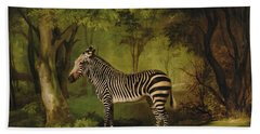A Zebra Beach Towel by George Stubbs