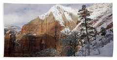 A Zion View Along The Trail Beach Towel by Daniel Woodrum