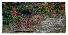 Beach Towel featuring the photograph Abandoned Irish Cottage In Autumn by James Truett