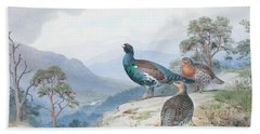 Above The Forest, Capercaillie And Grouse Beach Towel