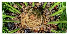 Abstract Nature Tropical Fern 2096 Beach Sheet