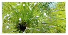 Abstrct Grass Beach Sheet