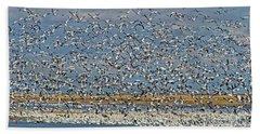 Beach Towel featuring the photograph Abundance.. by Nina Stavlund