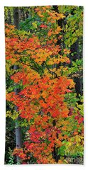 Beach Towel featuring the photograph Adirondack Crimson by Diane E Berry